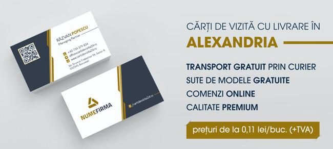 carti de vizita alexandria