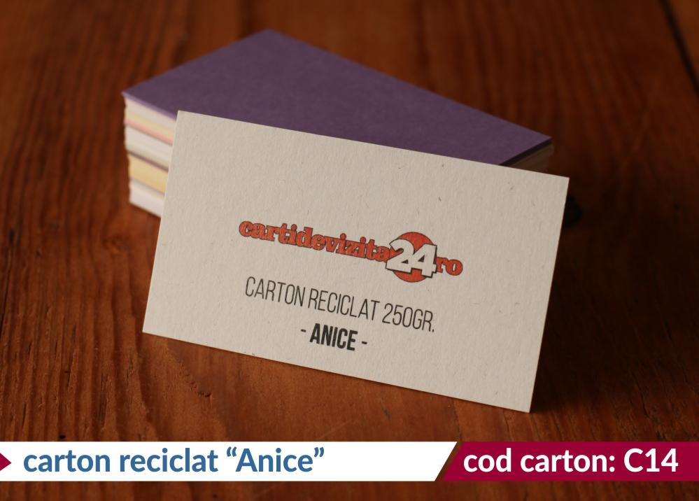 carton reciclat anice 250g