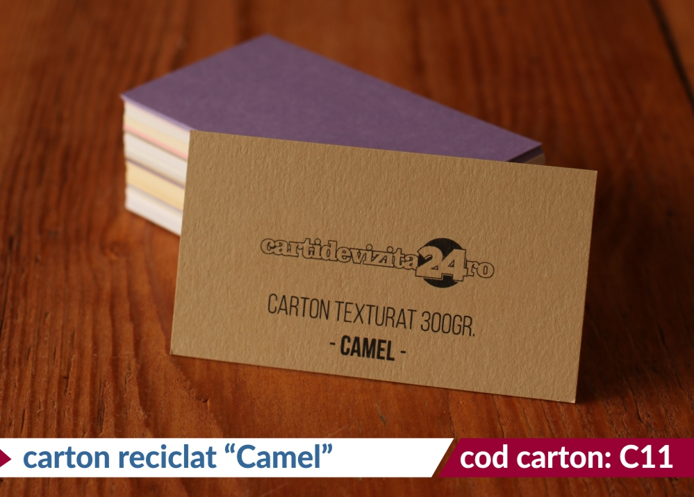 carton reciclat camel 300g