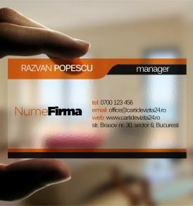 model carti de vizita transparente