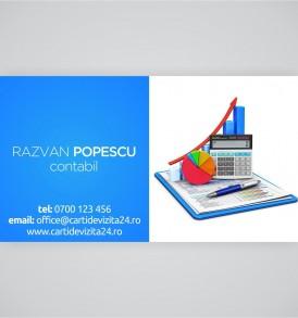 carti vizita contabilitate