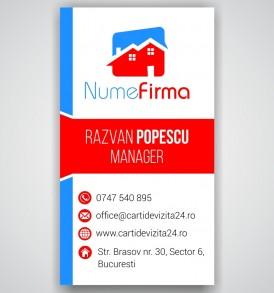 carti vizita agent imobiliar