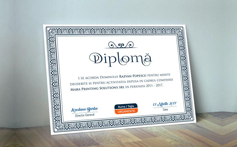 model diploma
